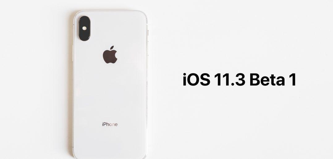 iOS 11.3 beta